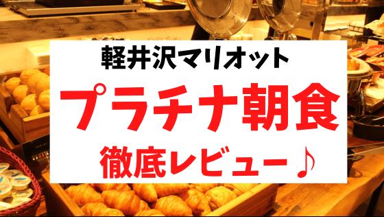 Karuizawamariotthotel